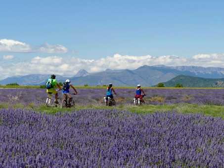 randonnée, provence, vélo électrique