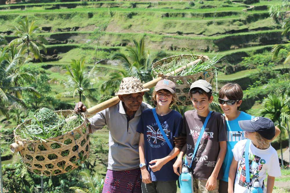 Indonésie, Munduk, paysan dans les rizières