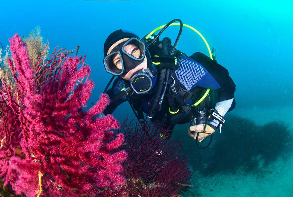 Plongeuse et de belles gorgones - Mèdes, Porquerolles