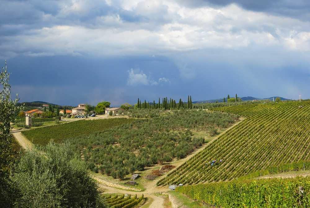 Randonnée au cœur de Radda in Chianti