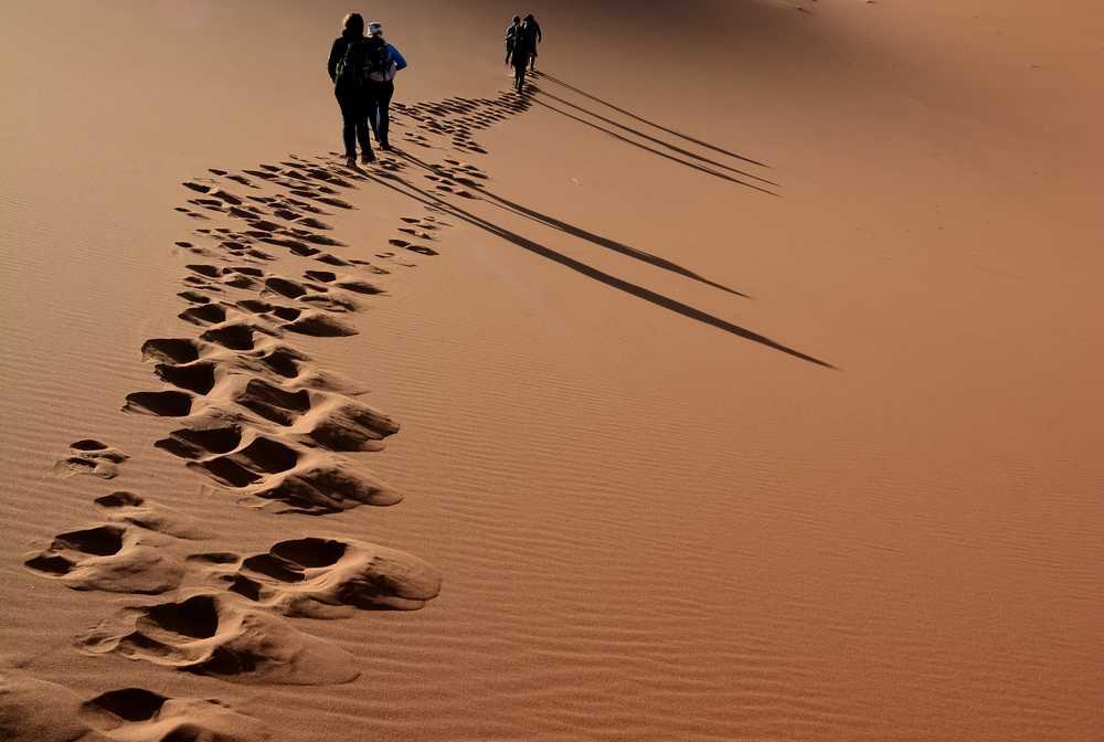 Traces de pas dans les dunes du Drâa, Maroc