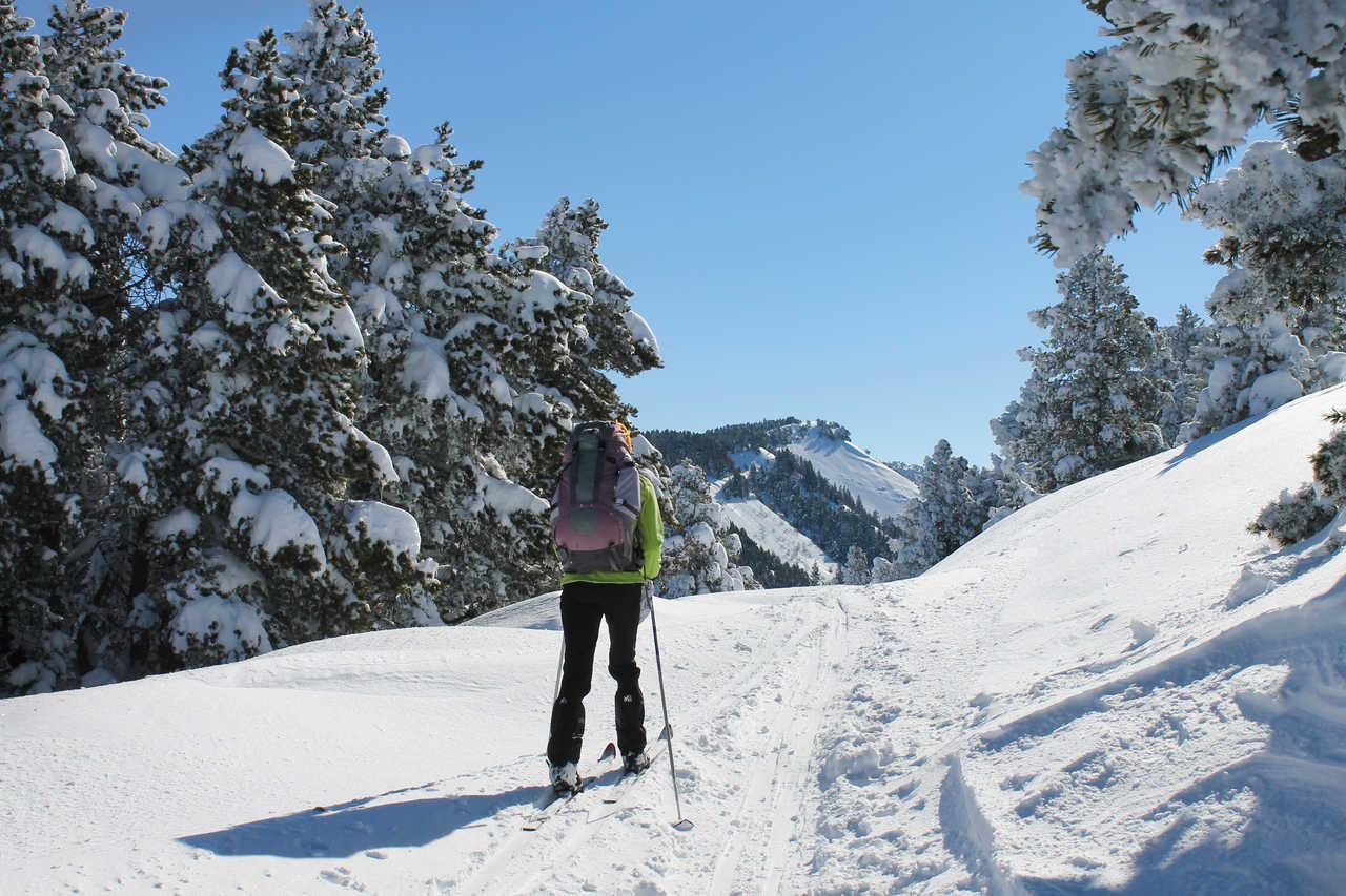 A ski dans les Alpes, Vercors