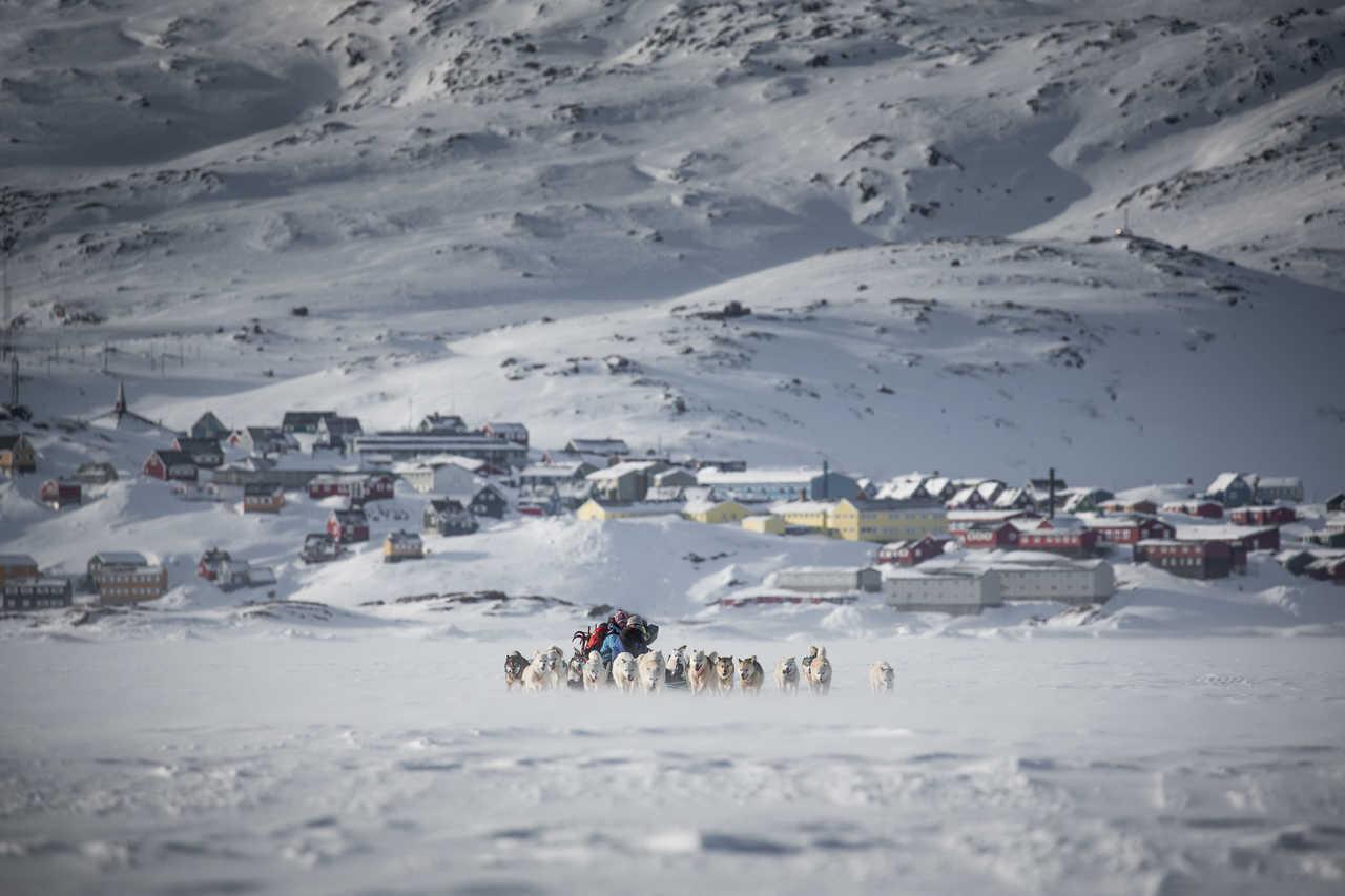 Chiens de traîneau, quittant Tasiilaq au Groenland, côte Est