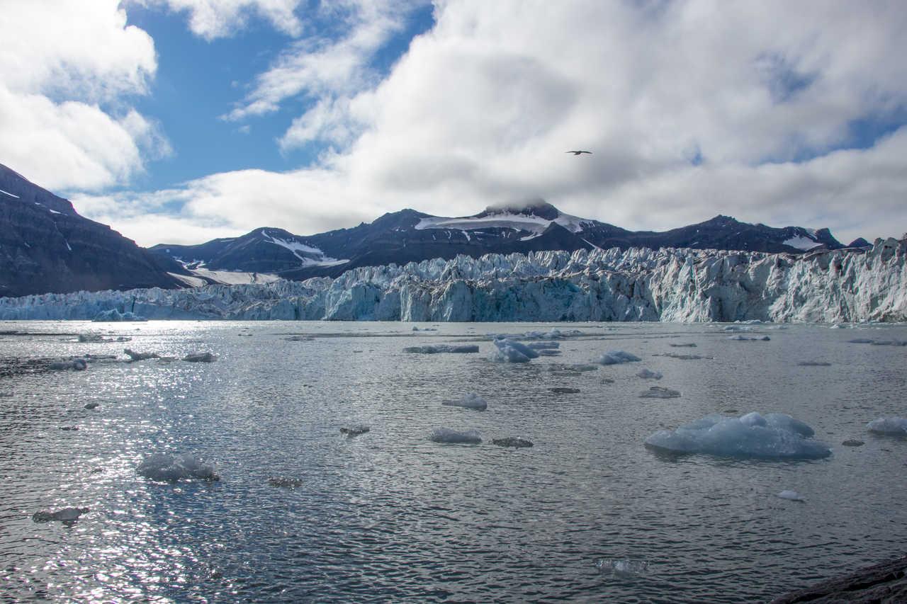 Glacier de Svéa Spitzberg