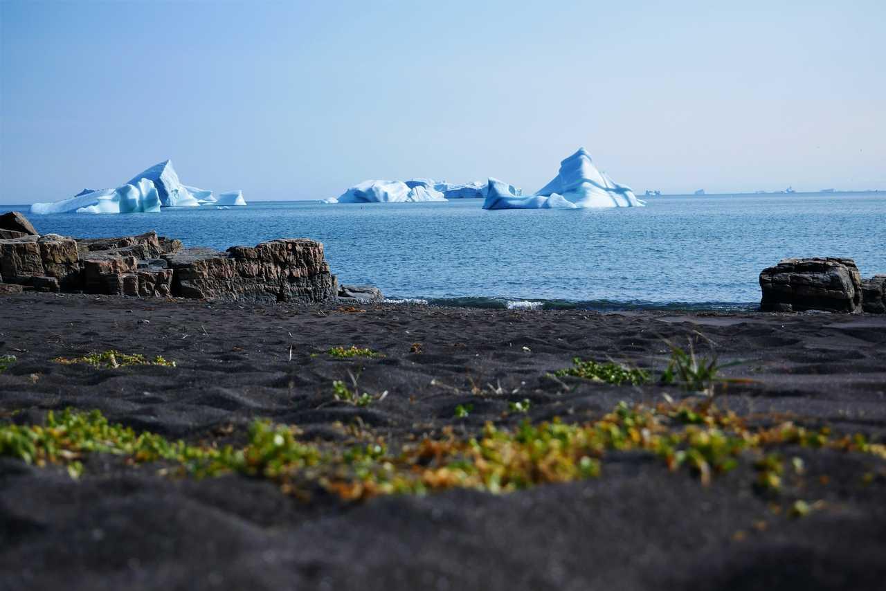 Icebergs depuis la côte Ouest du Groenland