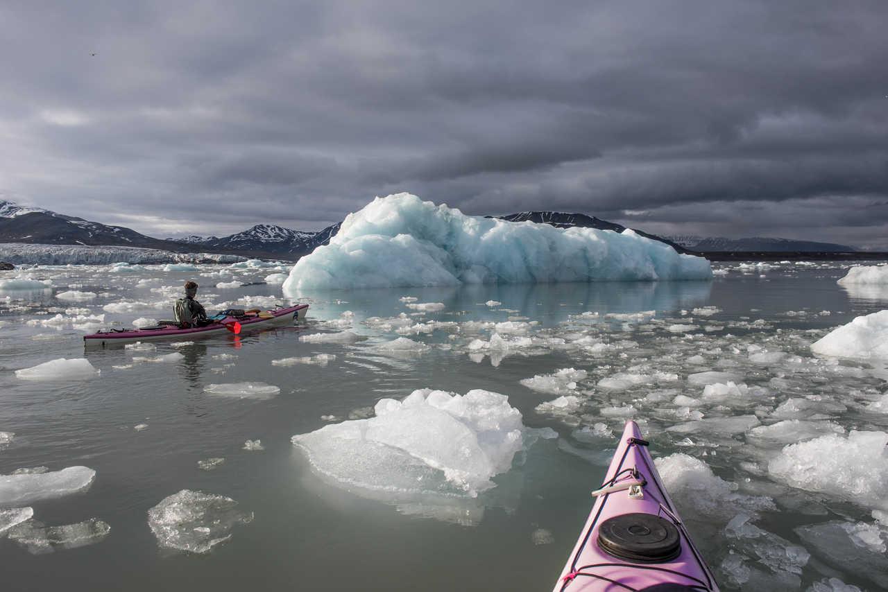 Kayak de mer en Arctique parmi les icebergs