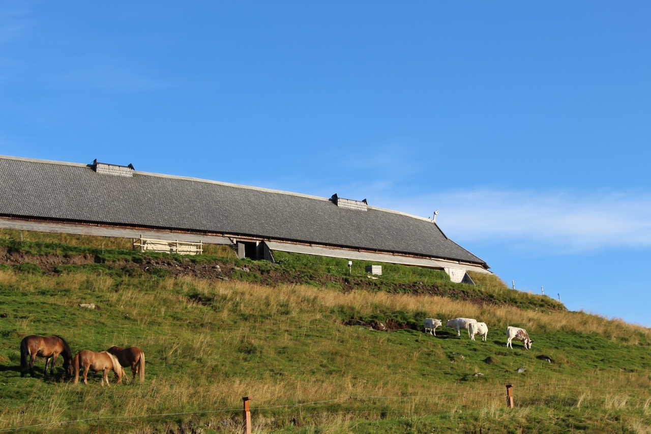 Maison viking, musée de Borg, îles Lofoten, Norvège