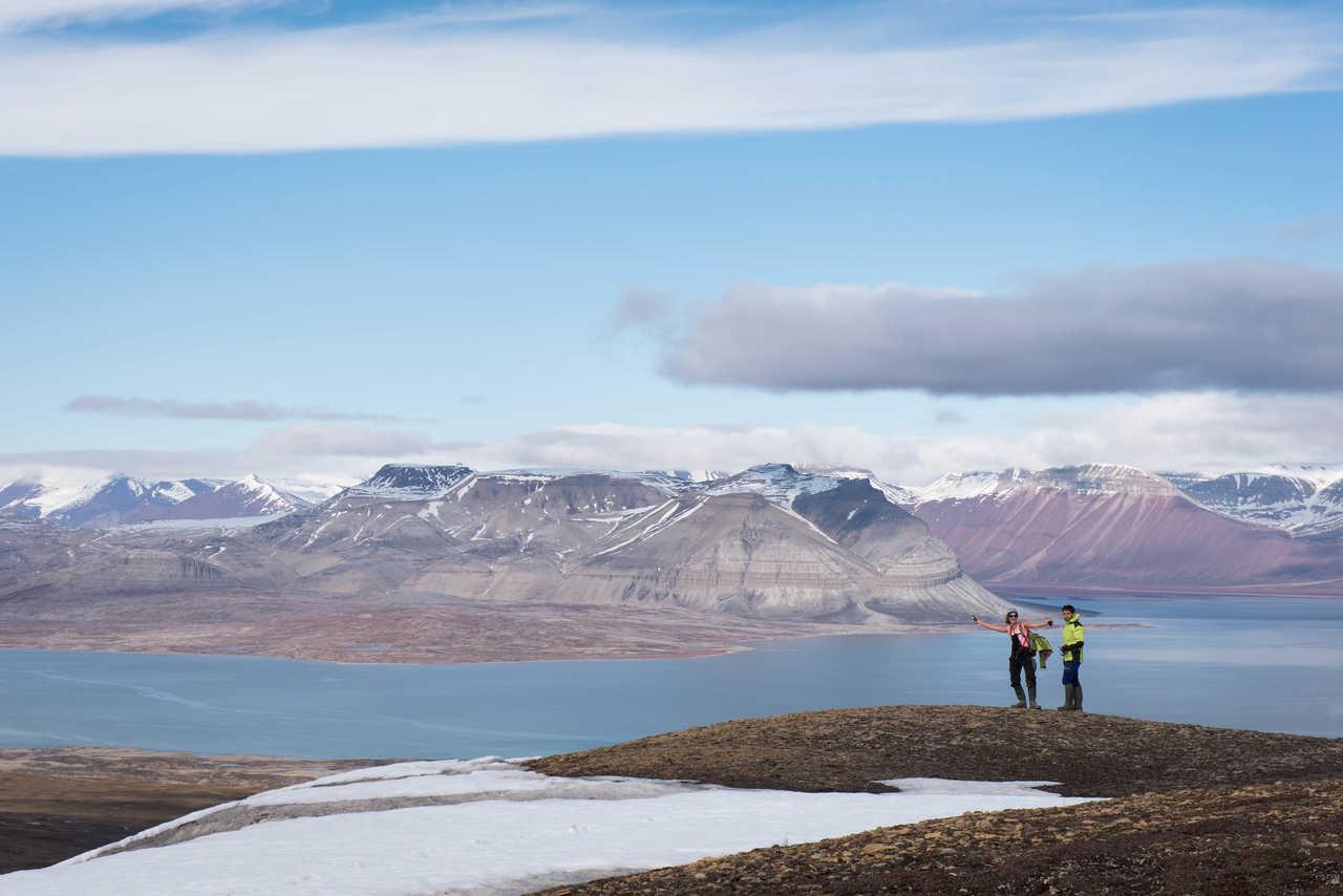 Paysage de l'Arctique en été, Ekman