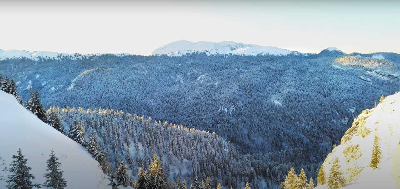 Paysage des Alpes sous la neige