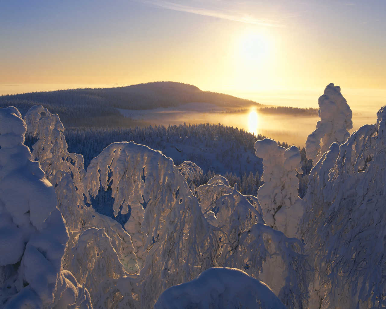 Paysage Finlande en hiver