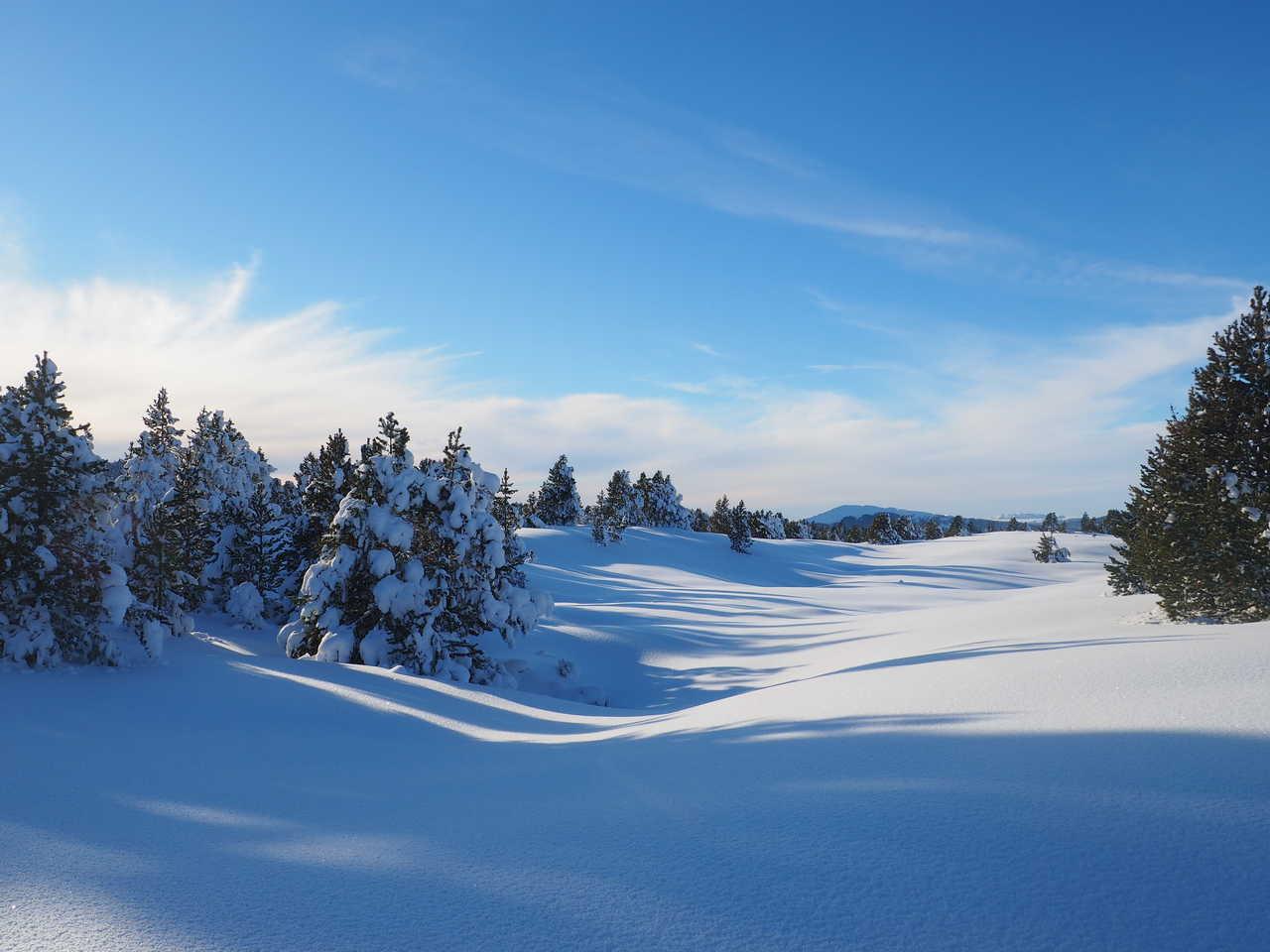Paysage hivernal du Vercors