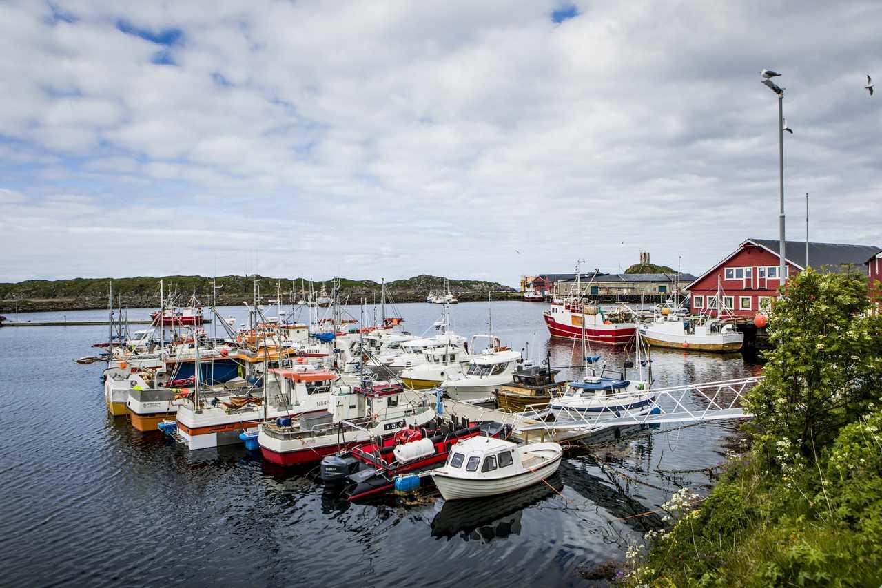 Port de Norvège