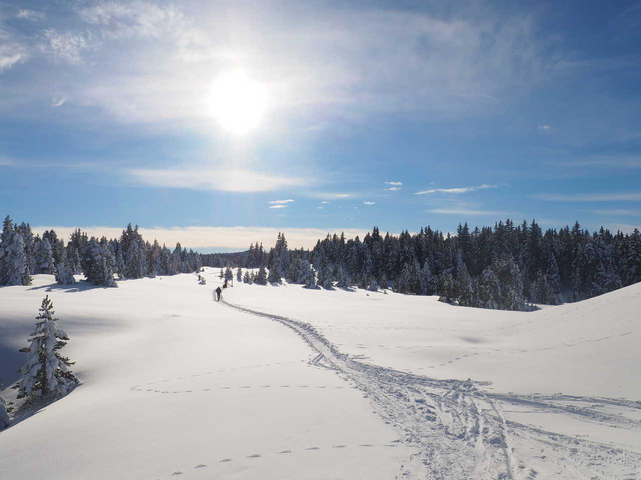 Sur les hauts plateaux du Vercors l'hiver, Alpes du Nord