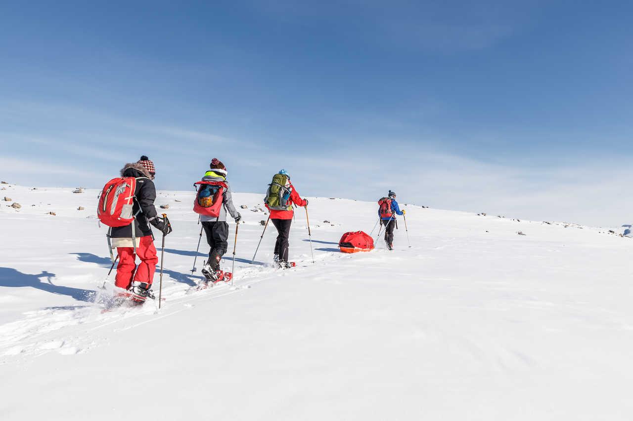 Randonnée raquettes au Groenland