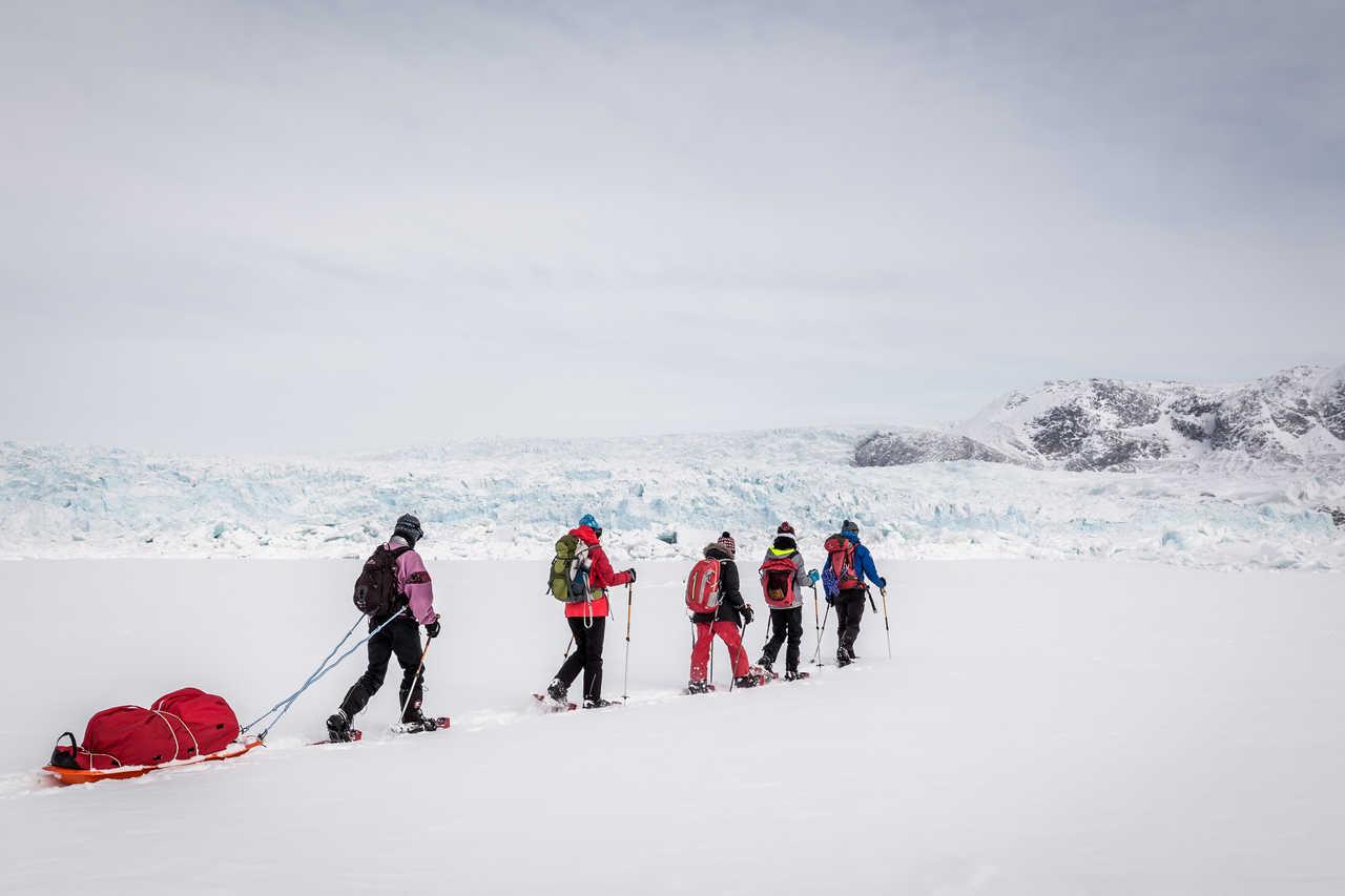 Raquettes pulka au Groenland