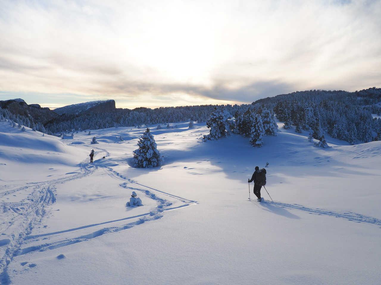 Ski de randonnée nordique dans le Vercors
