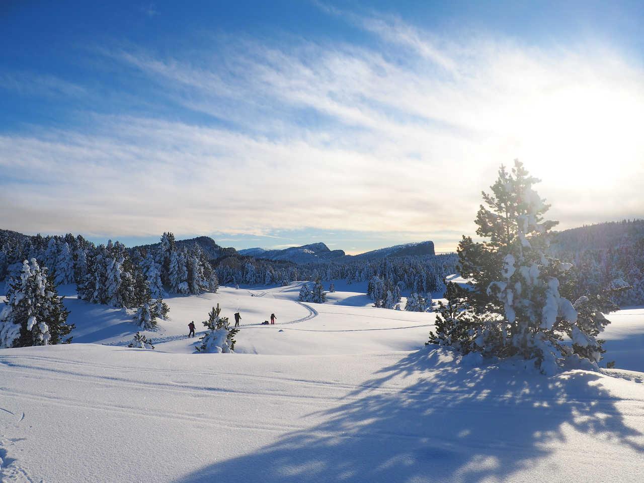 Randonnée raquettes l'hiver dans le Vercors, Alpes françaises