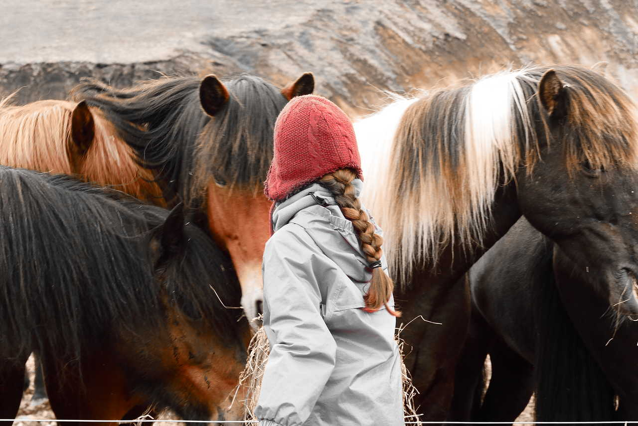 Photo d'un voyage famille en Islande