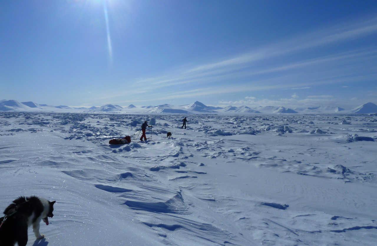 voyage Ski pulka en arctique Svalbard