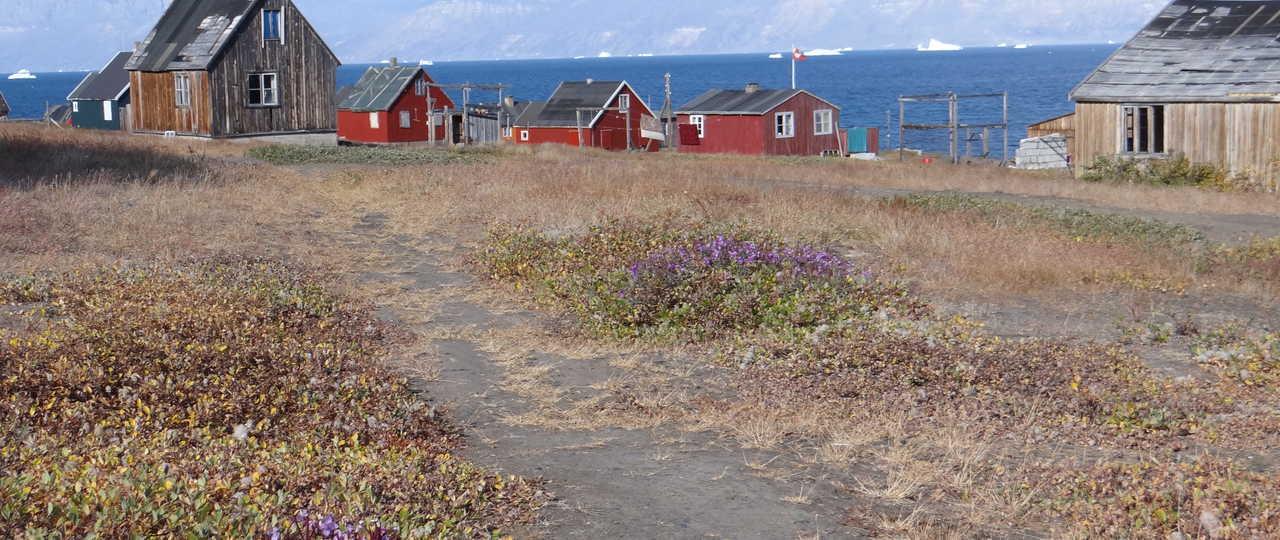 Photo village au Groenland lors d'une croisière polaire