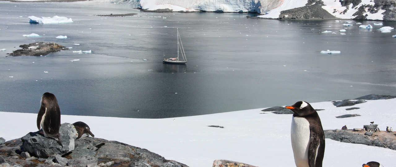 Croisière voilier en Antarctique, Port Lockroy
