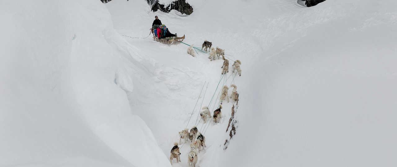 En traineau à chiens près de Sermilik sur la côte Est du Groenland
