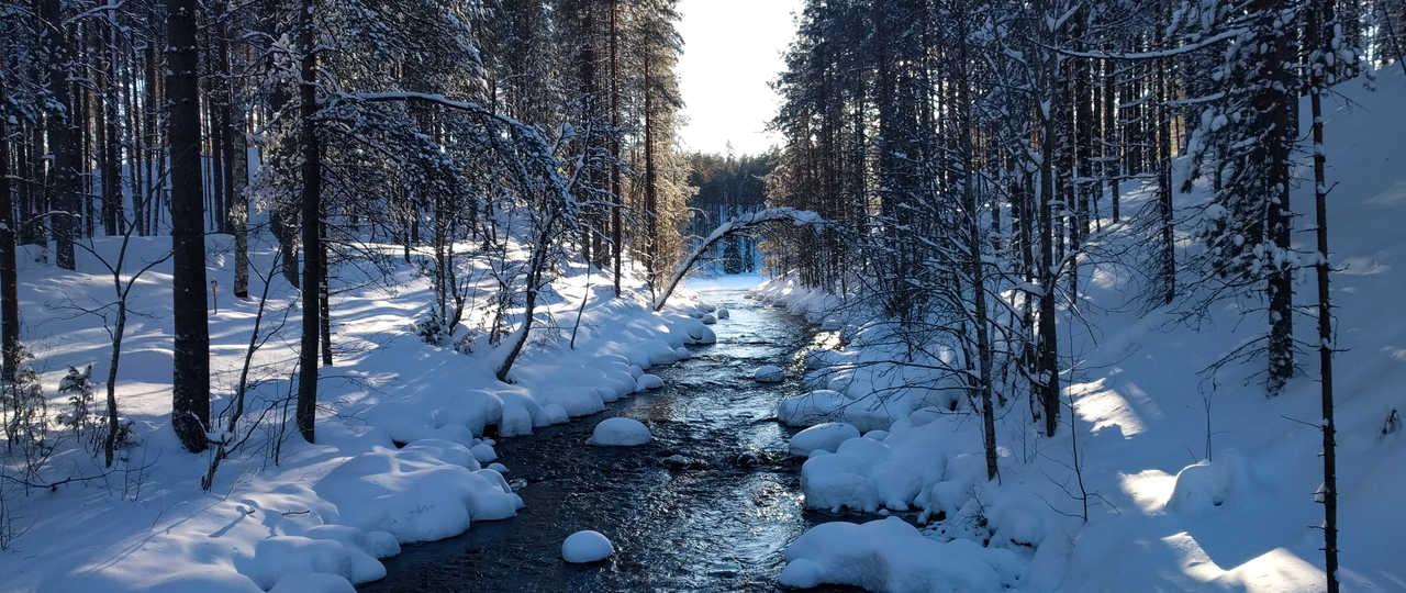 Finlande l'hiver, Laponie