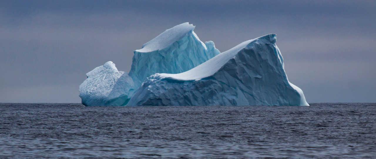 Iceberg au Canada, Terre-Neuve