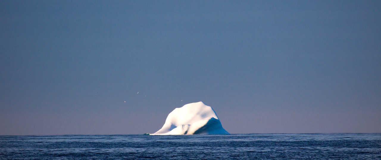 Iceberg au large de Terre-Neuve