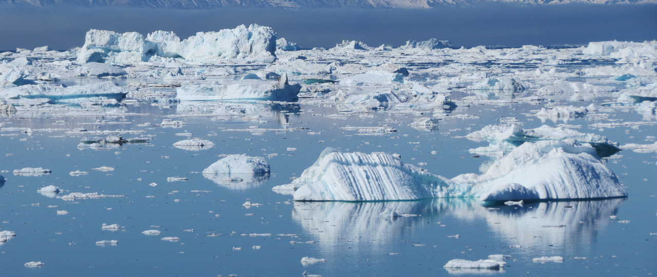 Icebergs blancs