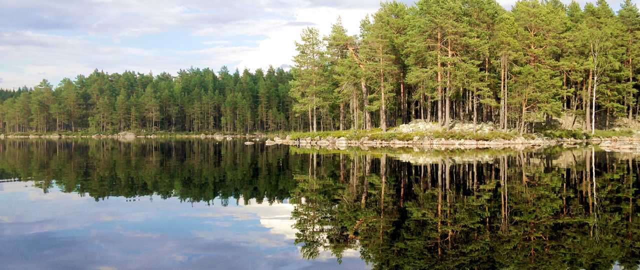 Lac en Suède l'été