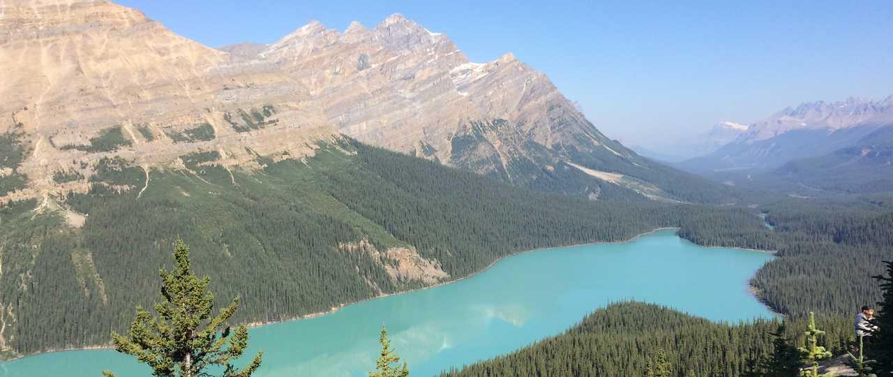 Panorama sur le lac Peyto au Canada