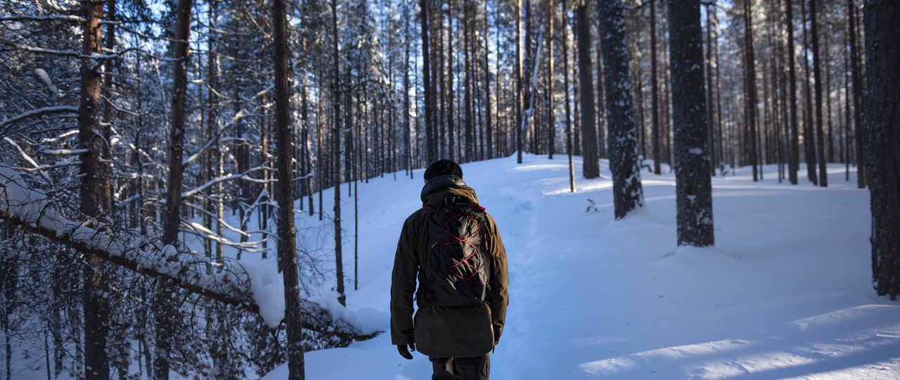 Randonnée raquette dans la forêt finlandaise