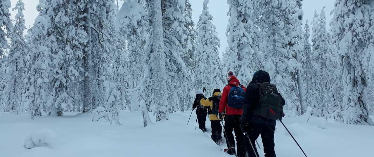 Randonnée raquettes à neige en Finlande l'hiver