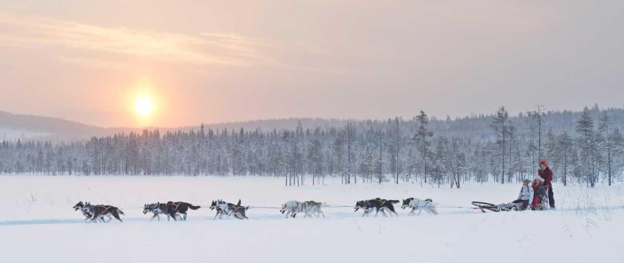 Traversée d'un lac gelé en traîneau à chiens en Laponie Suédoise