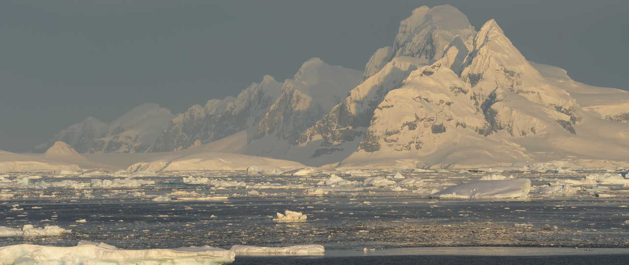 Photo d'un voyage en antarctique