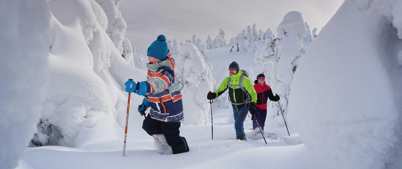 Voyage famille raquettes en Finlande l'hiver