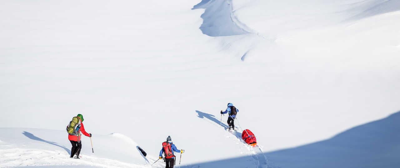 Voyage hiver au Groenland