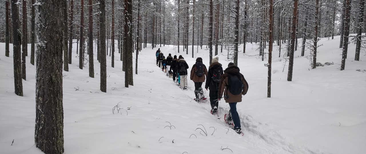 Voyage randonnée raquettes en Laponie finlandaise
