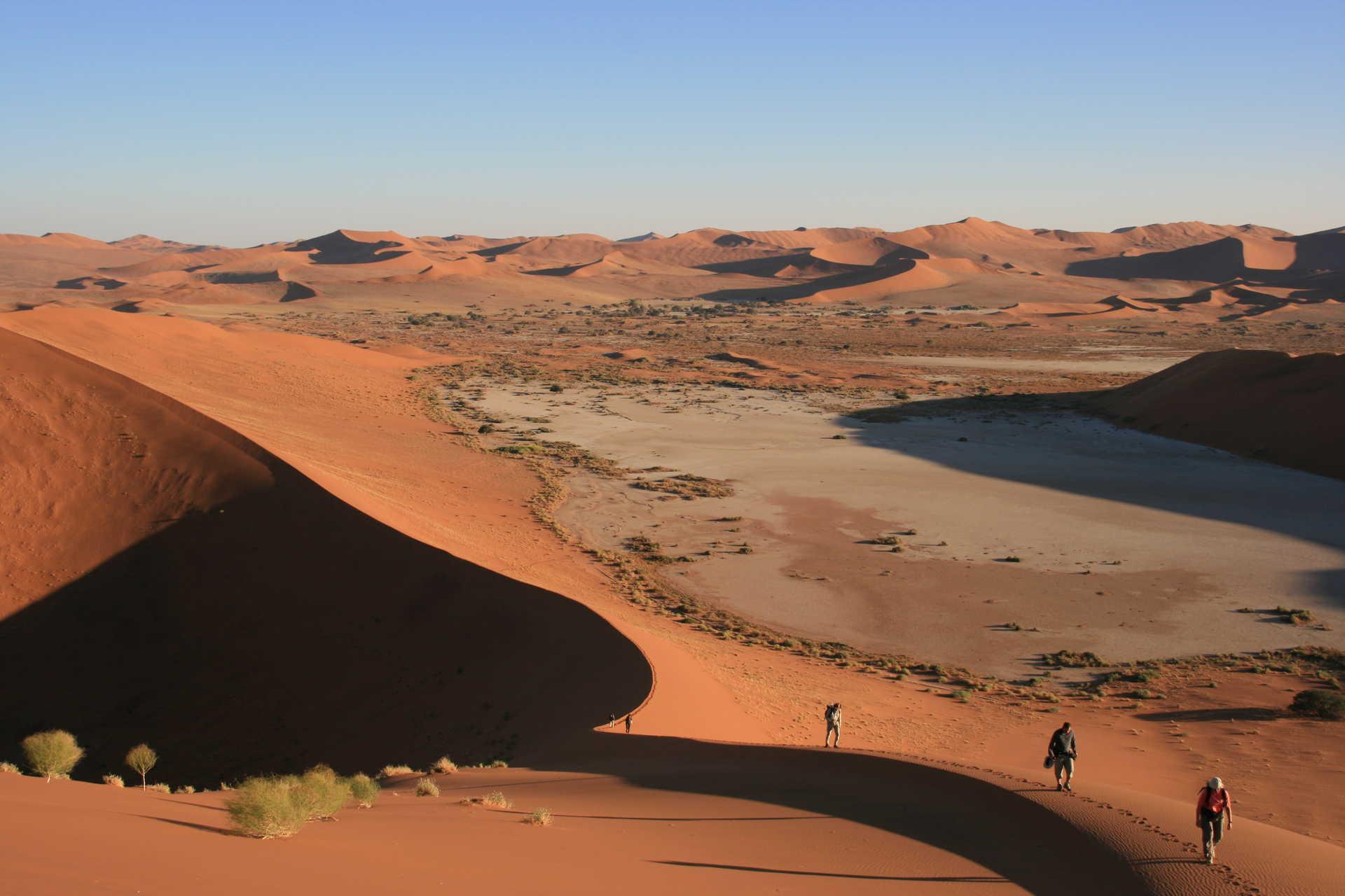 Ascension de la Crazy Dune, la plus haute de Sossusvlei dans le désert du Namib
