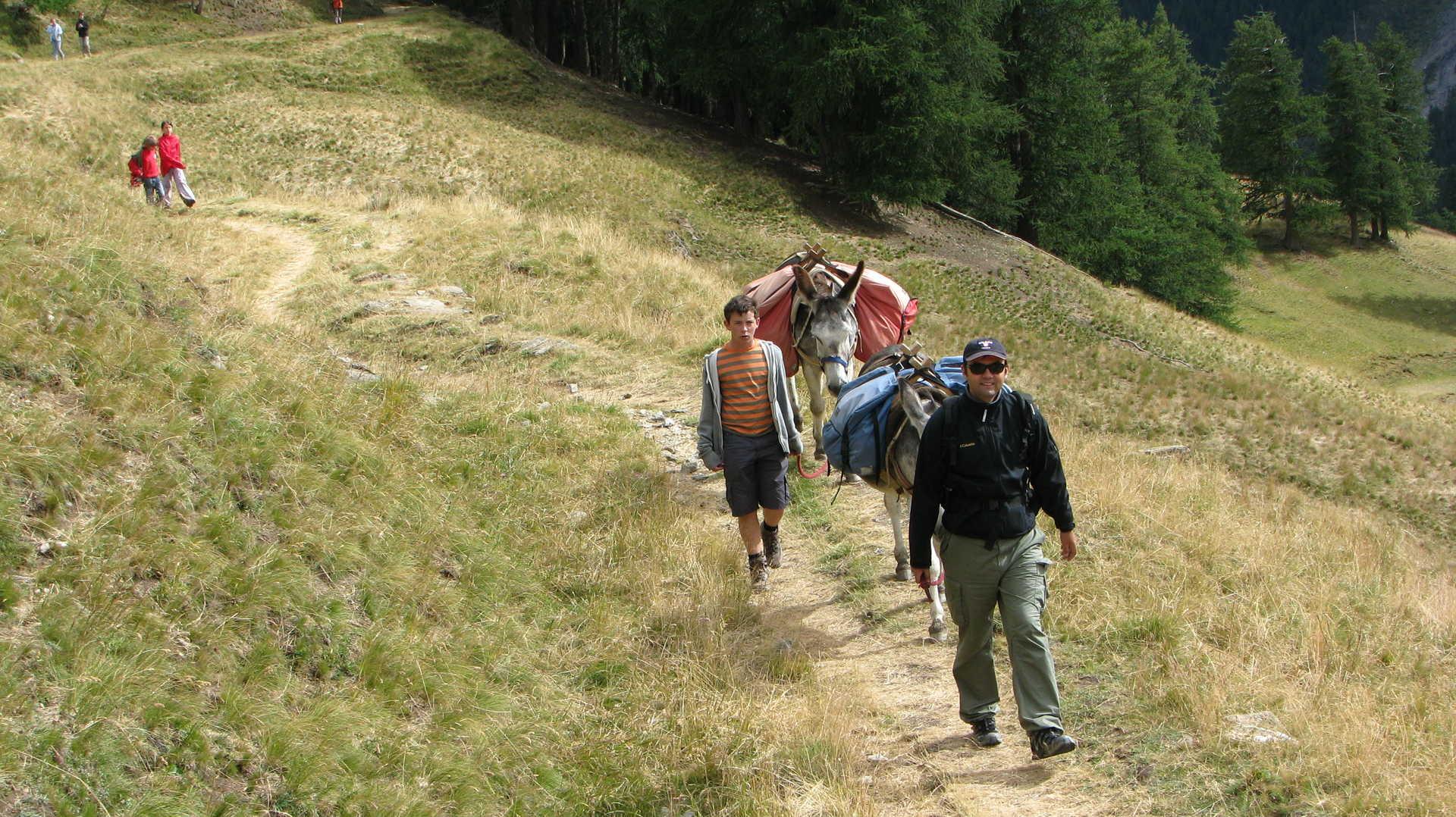France, alpes, Alpage de Furfande
