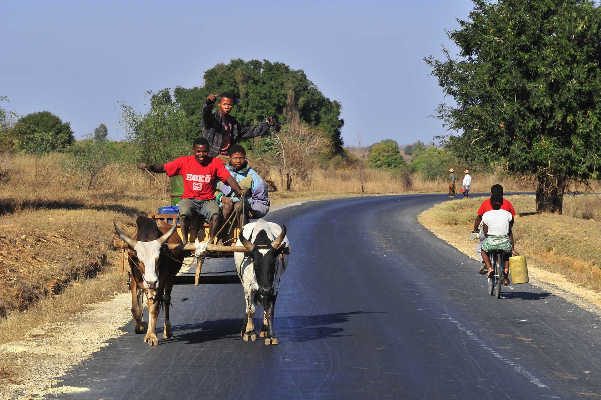 Charrette sur une route de Madagascar