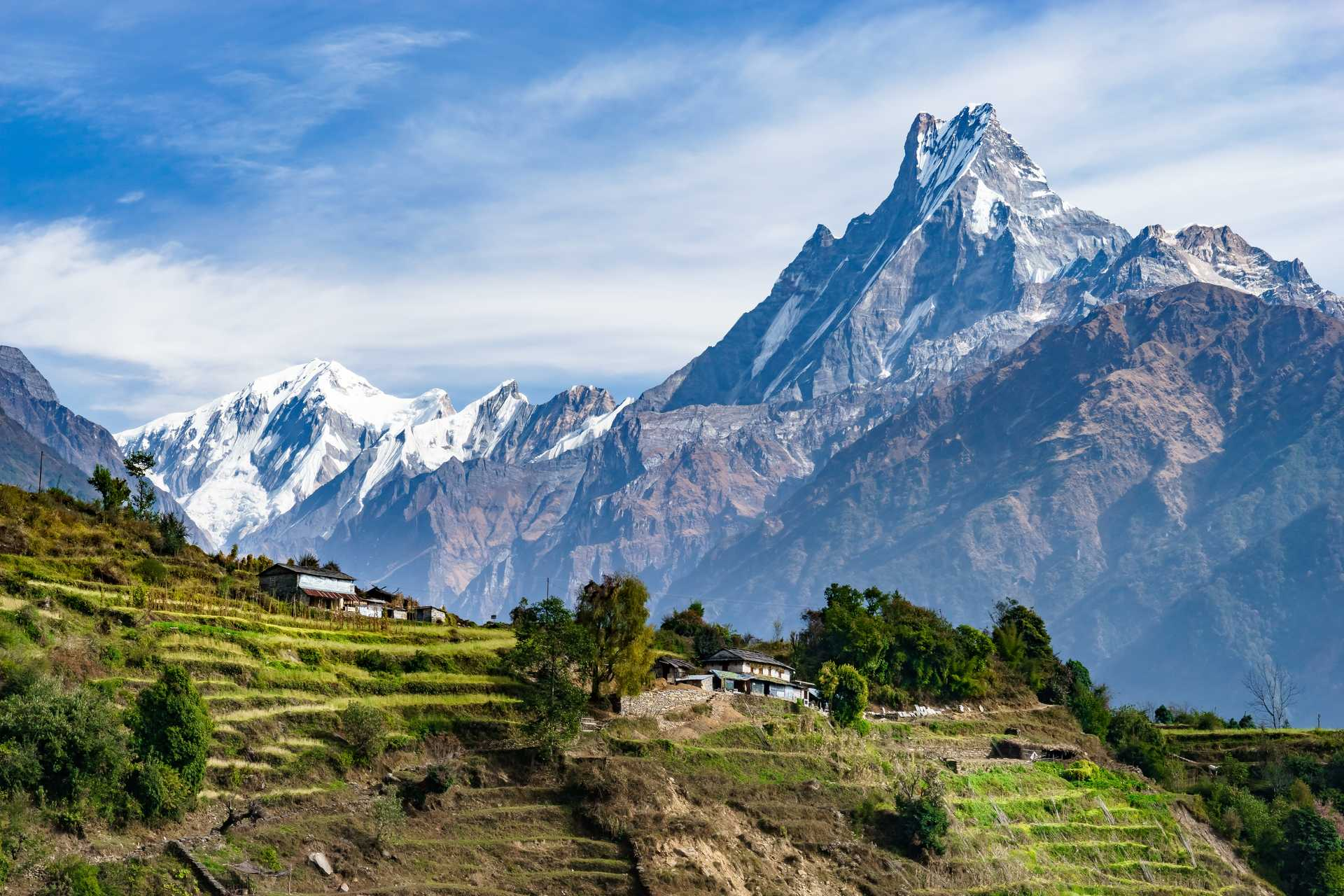 Cultures en terrasses devant l'Annapurna