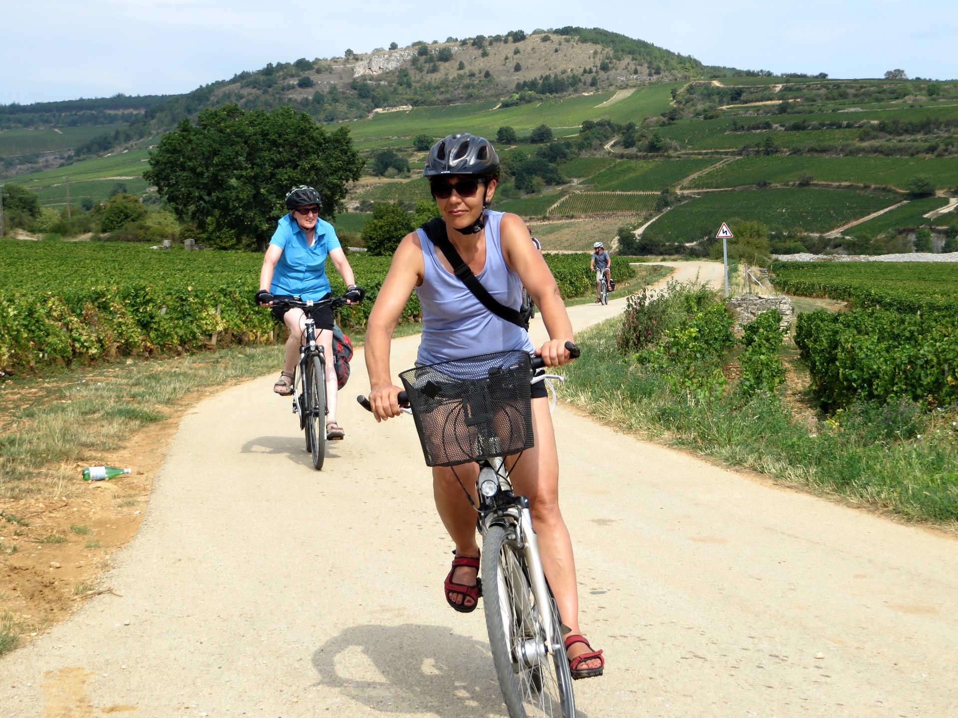 Cycliste en premier plan dans les vignes en bourgogne sud