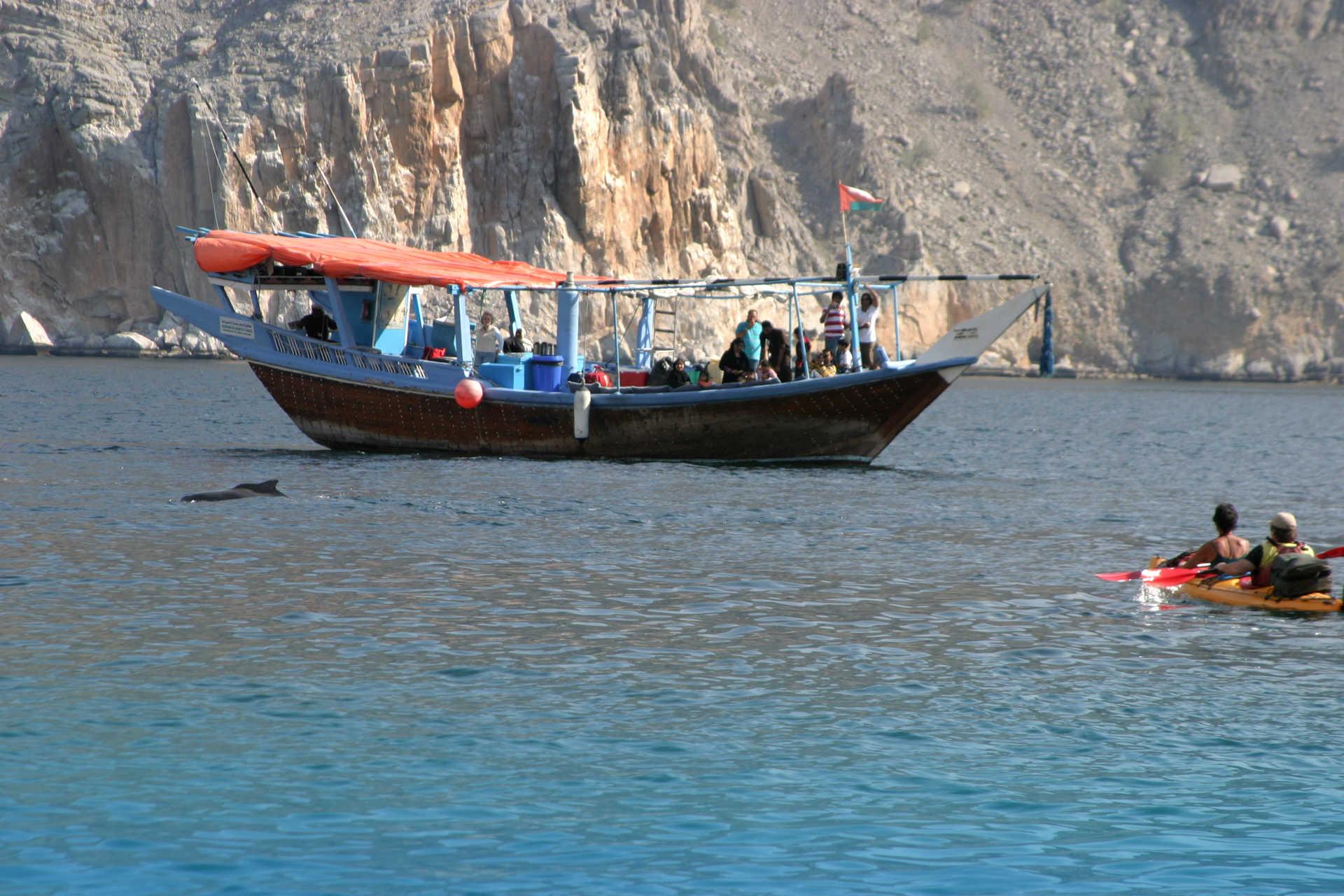 Dauphins, boutre et kayak, Musandam, Oman