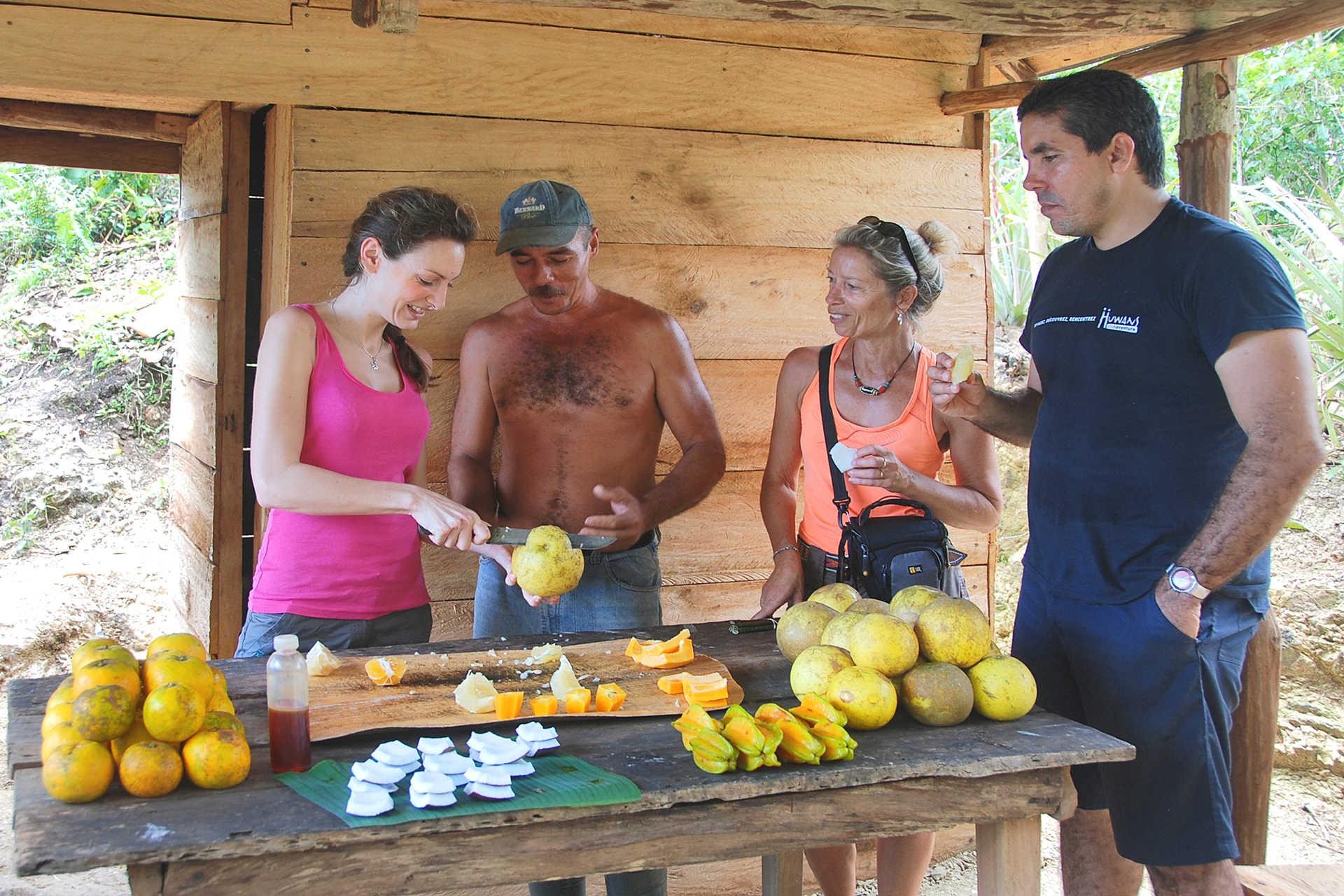 rencontre paysan fruits tropicaux Cuba