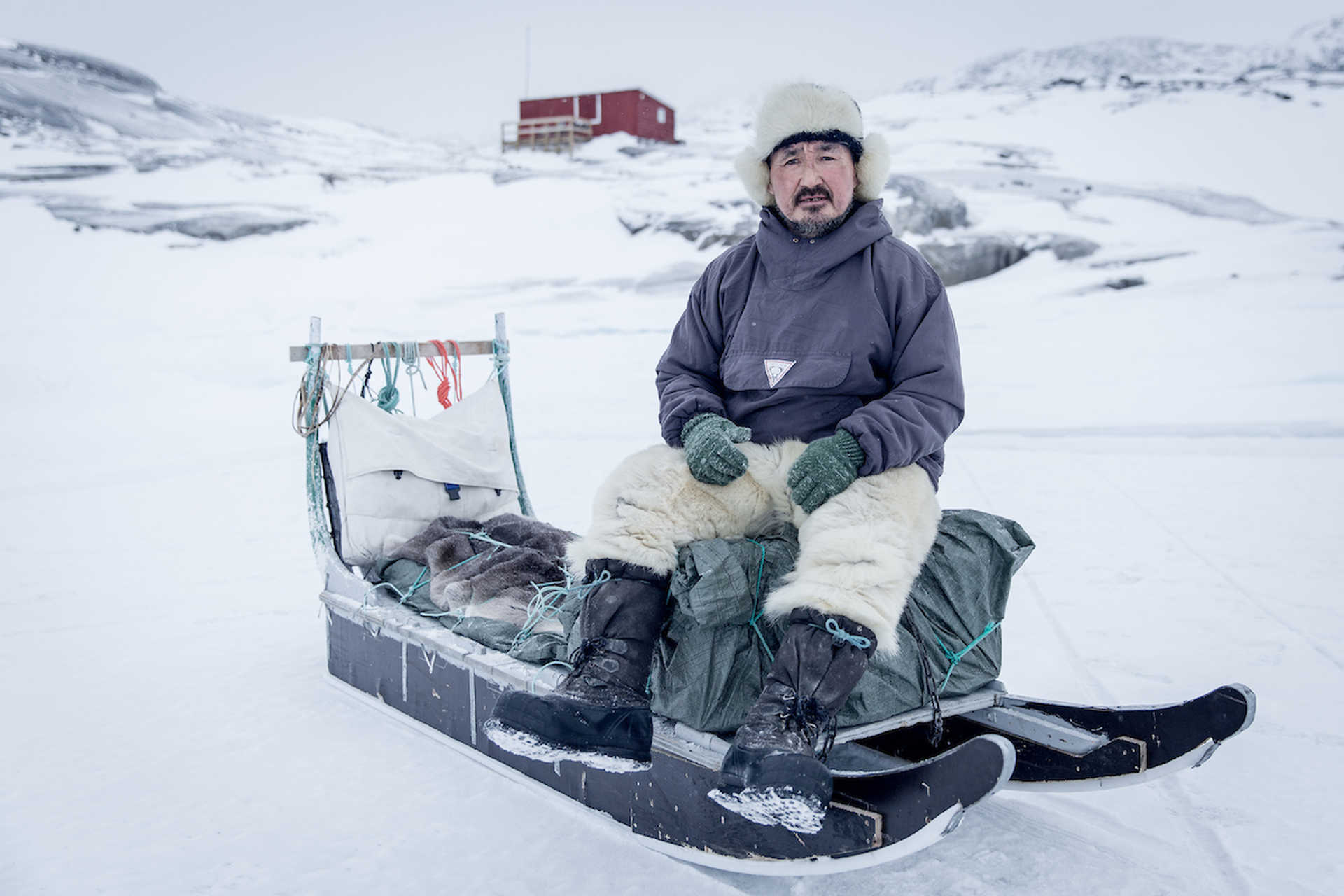 Inuit sur son traîneau à chiens au Groenland