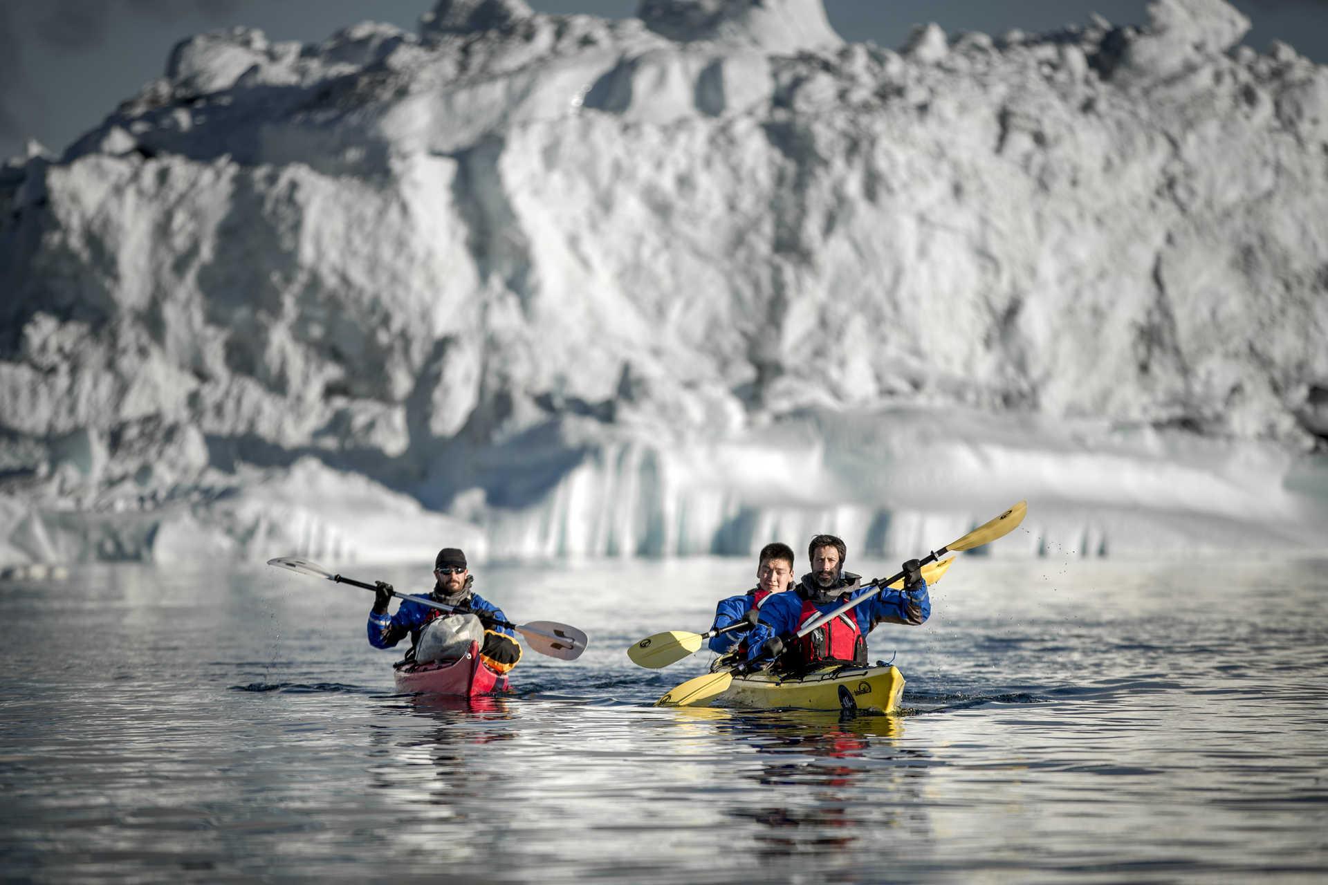 Kayakistes en Arctique