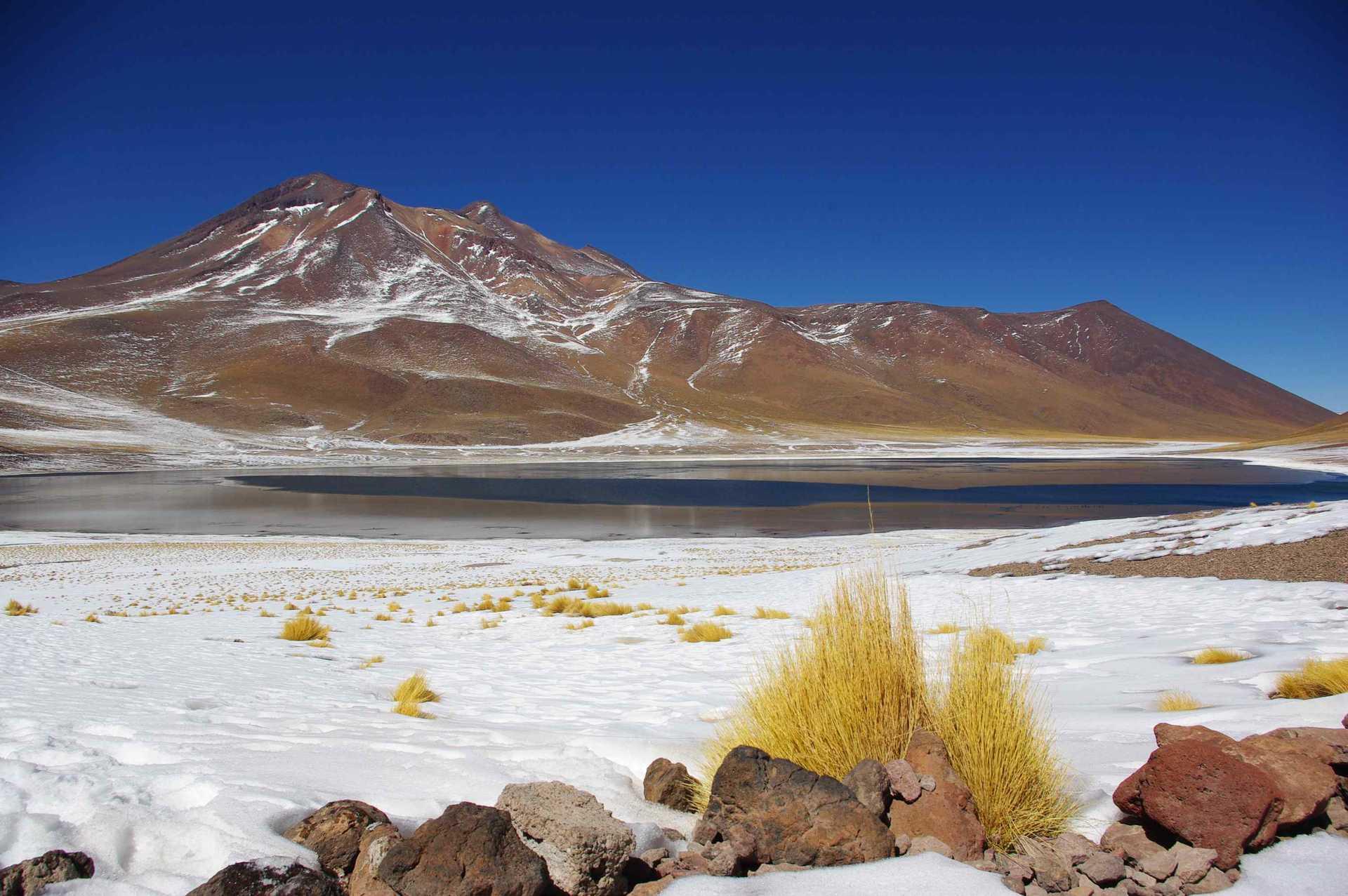 La laguna Miscanti, Atacama, Chili