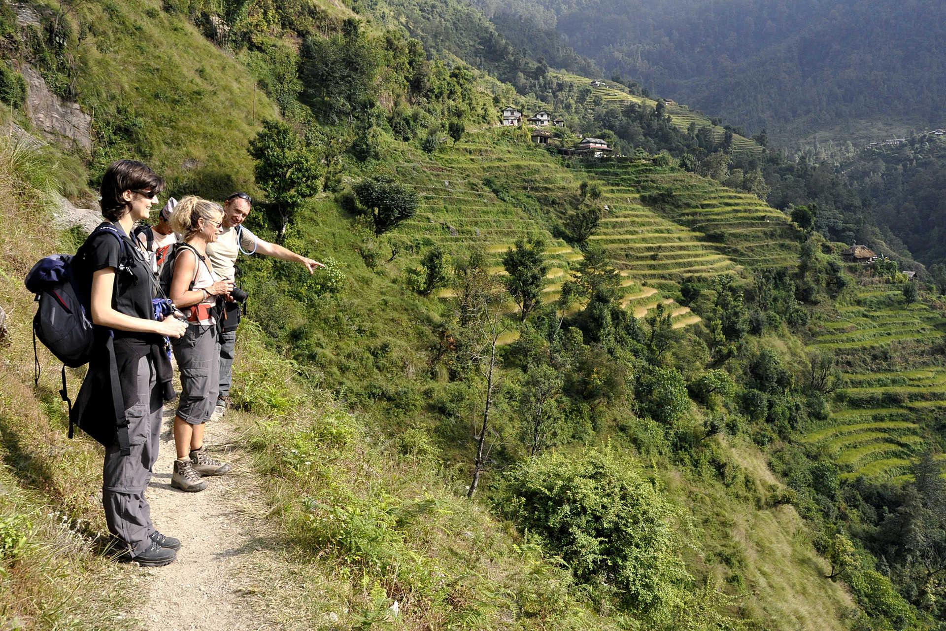 Les rizières en terrasse sur les balcons des Annapurnas